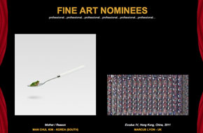 International Color awards Fine Art Nominees - Photographer Manchul Kim's Personal Work REASON - Mother